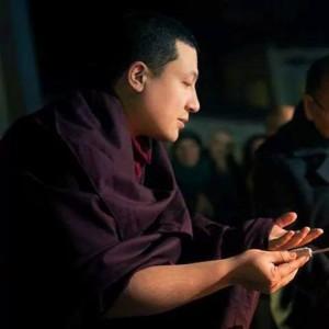 Karmapa on compassion