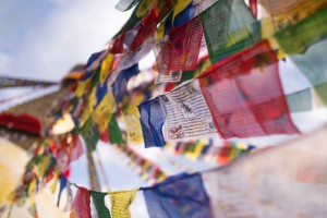 Karmapa Public Course, March 14–19
