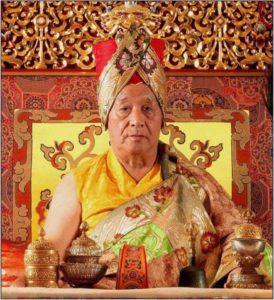 Birthday of H.H. Gyalwa Karmapa and Paranirvana of Jigdal Dagchen Sakya Rinpoche