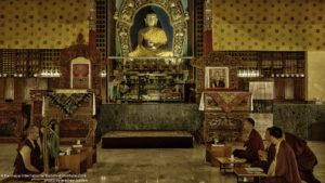 Celebrating Buddha Purnima at K.I.B.I.
